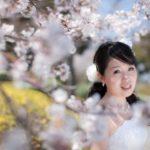 ウェディングアイテムを桜でもっと印象的に!