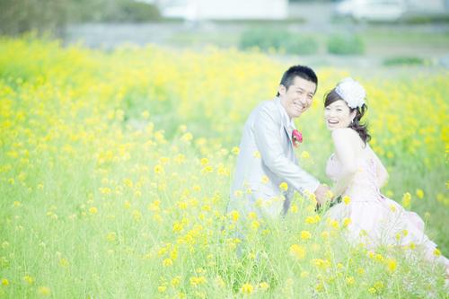 菜の花畑での結婚写真